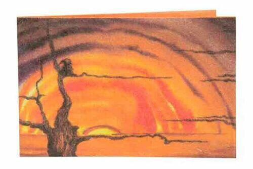 Carteira | Sunset