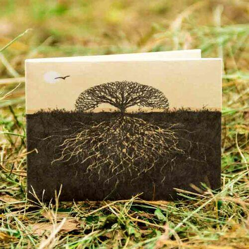 Carteira | Árvore da Vida