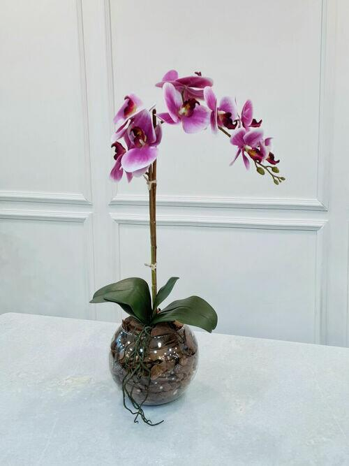 Arranjo Orquídea Anne RX/BR